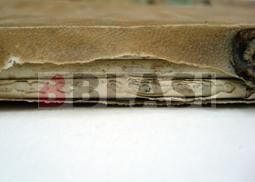 Detall del llom mossegat per un rosegador
