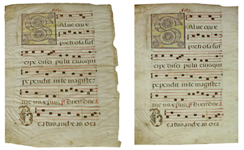 Fulla de cantoral medieval de pergamí