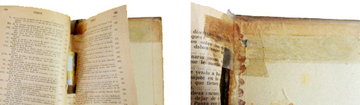 Detalls de l'Ironfix® i el celo abans de la restauració