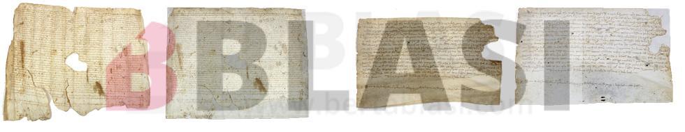 El pergamí 111 i el pergamí 117 del Fons Plans i Cuyàs de l'Arxiu Comarcal del Baix Llobregat abans i després de la restauració